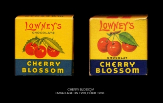 Cherry_blossom_1920